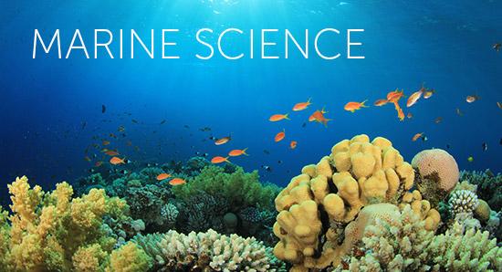 Marine Sciences grade 12 exam paper and Memorandum